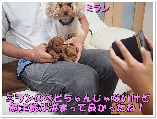 20180715_022.jpg