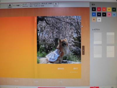 CIMG0527_convert_20180613224658.jpg