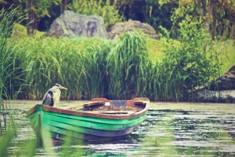 川とボート