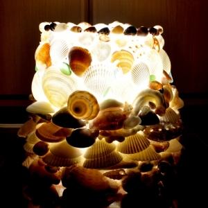 lamp_shell_2.jpg
