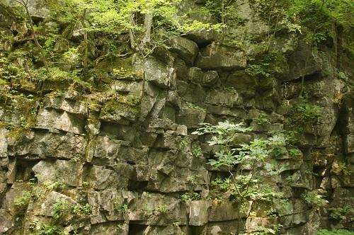 20180624-092 奥入瀬・溶結凝灰岩の板状節理