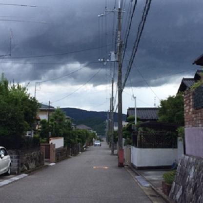 kuroikumo.jpg