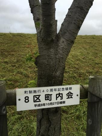八郎湖堤防清掃 041