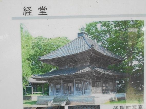 DSCN0043 - コピー