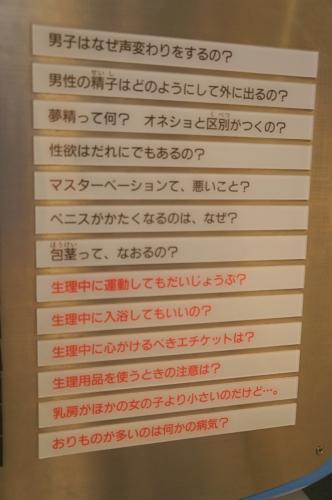 IMG_8648 (2)
