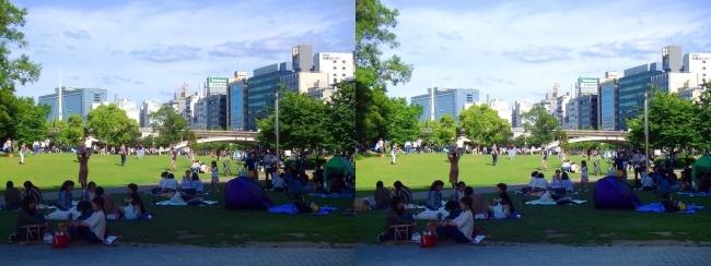 中之島公園 芝生広場(平行法)