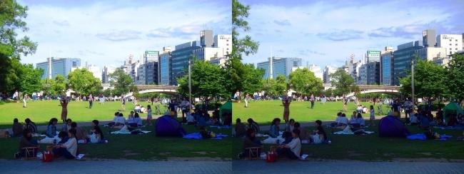 中之島公園 芝生広場(交差法)