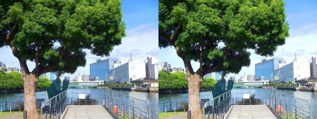 中之島公園 剣先噴水①(平行法)