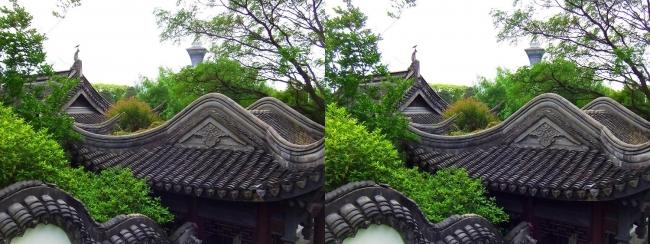 花博記念公園鶴見緑地 国際庭園 中華人民共和国(平行法)
