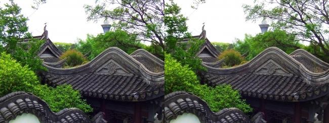 花博記念公園鶴見緑地 国際庭園 中華人民共和国(交差法)