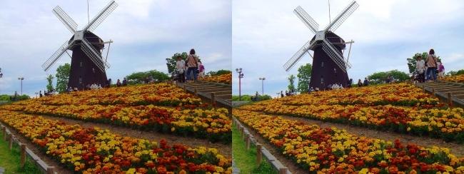 花博記念公園鶴見緑地 風車の丘(平行法)
