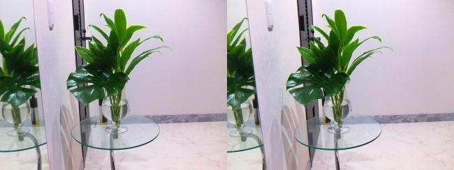 玄関ガラス花瓶②(平行法)