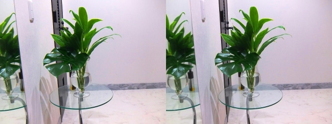 玄関ガラス花瓶②(交差法)
