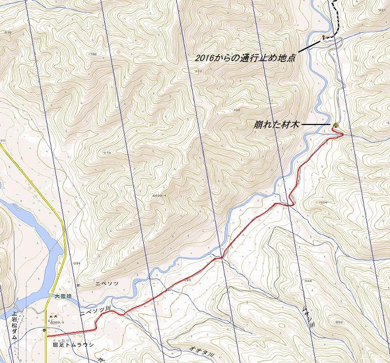 ニペソツ川沿log