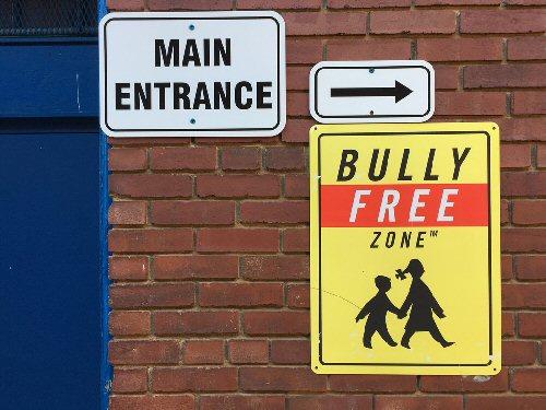 09a 500 Bully Free Zone