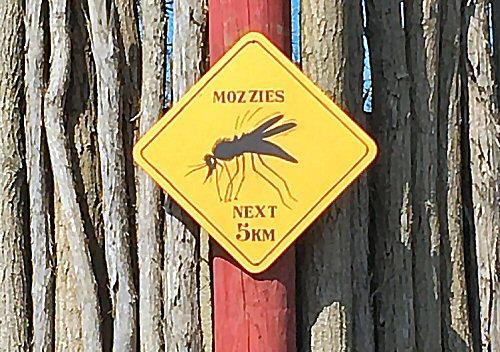 04c 500 mosquito zone