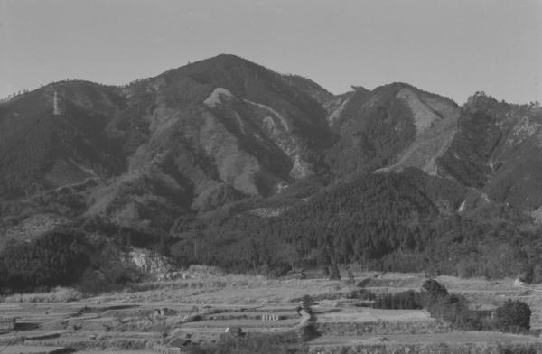 Kansai062-1dpp.jpg