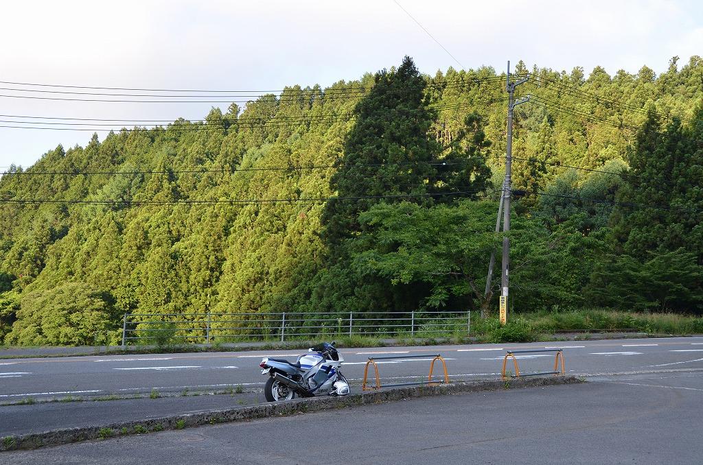 D7C_8201.jpg