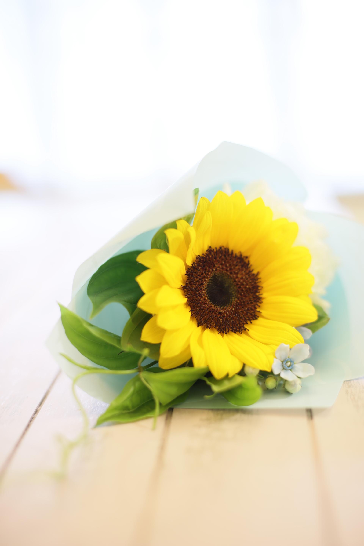 flower lesson 6