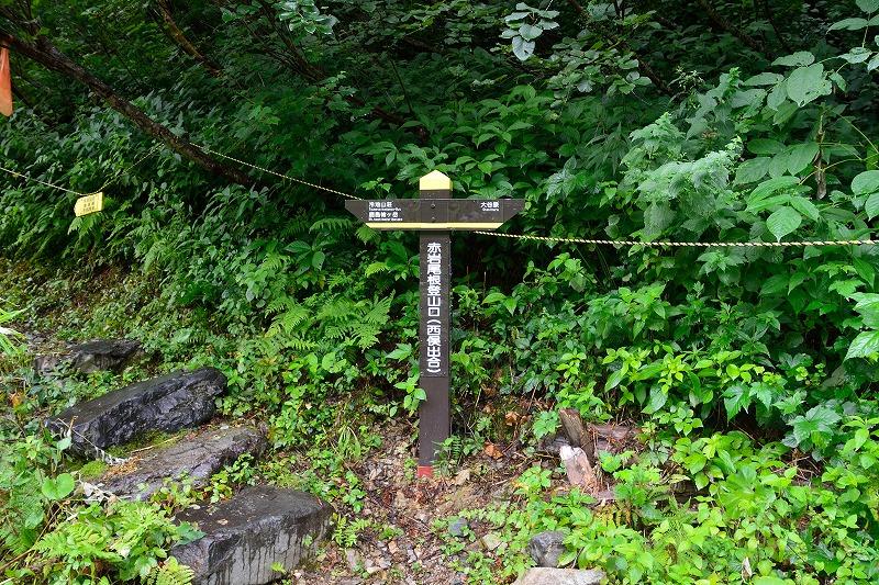 180807鹿島槍ヶ岳 (40)