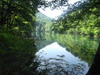 ブナの原生林に囲まれた雨生ケ池