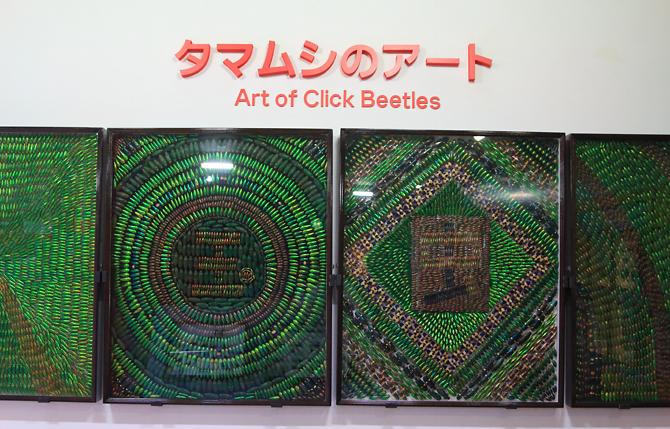 20180502玉虫アート