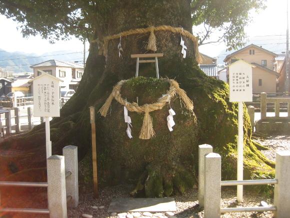 尾鷲神社-20