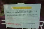 吉野山01-08