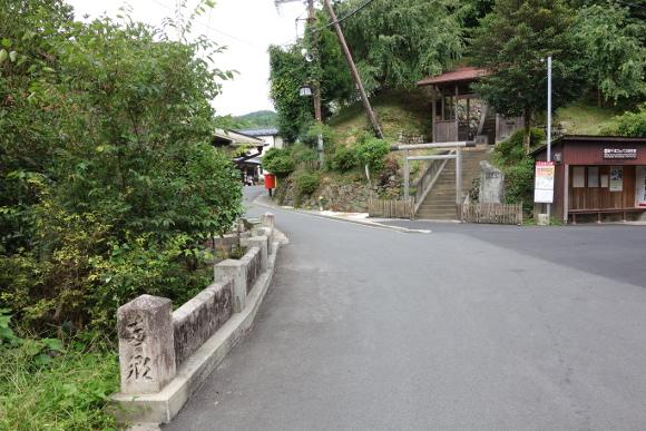 吉野山01-18