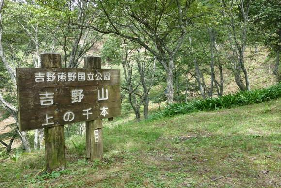 吉野山02-04