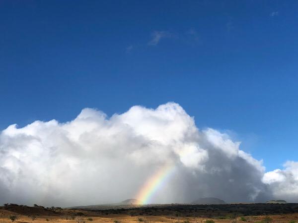 Rainbow072018