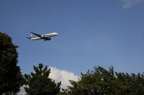 飛行機だけでないほうが