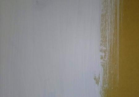 珪藻土ちょい塗り
