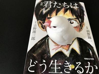 kimitachi201804.jpg