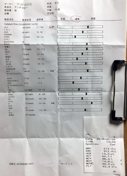 ketsueki-kensa_050718