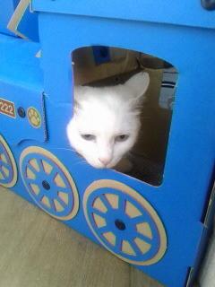 ちろ機関車