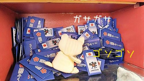ちゃんぷ20180708-04