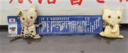 ちゃんぷ20180708-06