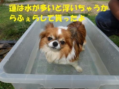 DSCF0738_convert_20180622092651.jpg