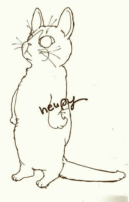 cat20180807001.jpg