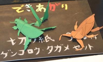 kawasemi14.jpg