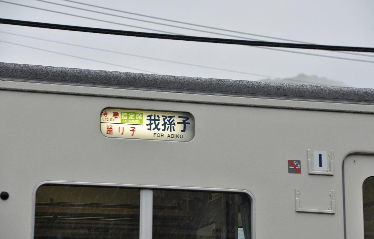 DSC_1484A.jpg