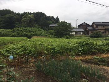 豁ヲ荳ヲ闕牙・繧垣convert_20180616164024