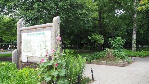 札幌市東区の銭湯 大学湯