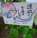 風鈴(2)