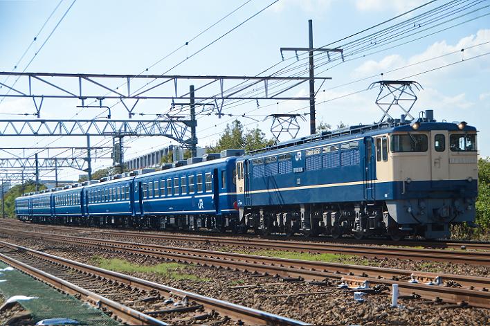 DSC_4320-3