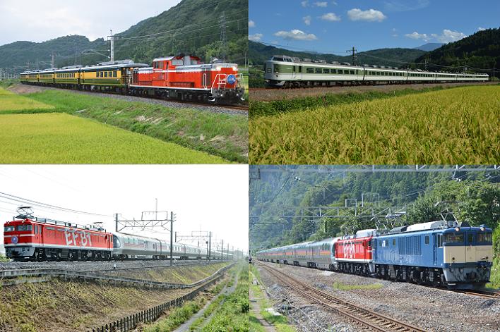 DSC_2626 2018年 鉄道画像④