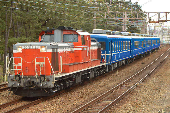 DSC_4525-4-1.png