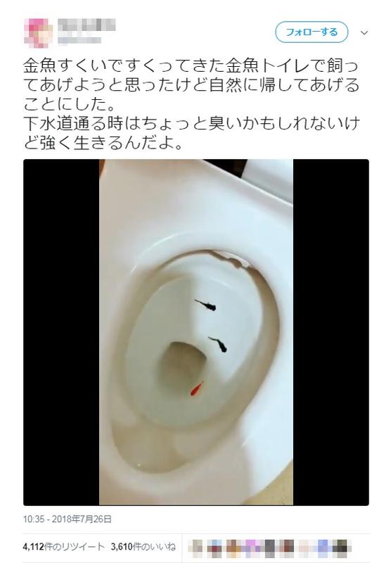 トイレ 金魚 馬鹿発見器