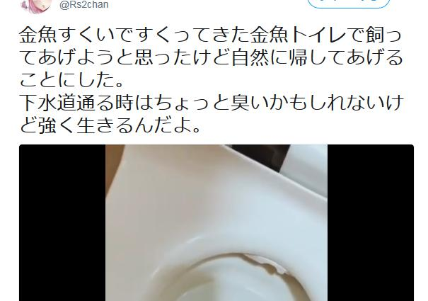夜店の金魚を「自然に帰してあげる」と、トイレに流す動画をツイートした女に非難殺到→ 女「トイレは池に直結しているから伸び伸びとと育つ!命を粗末にするわけないやろ」と逆ギレ